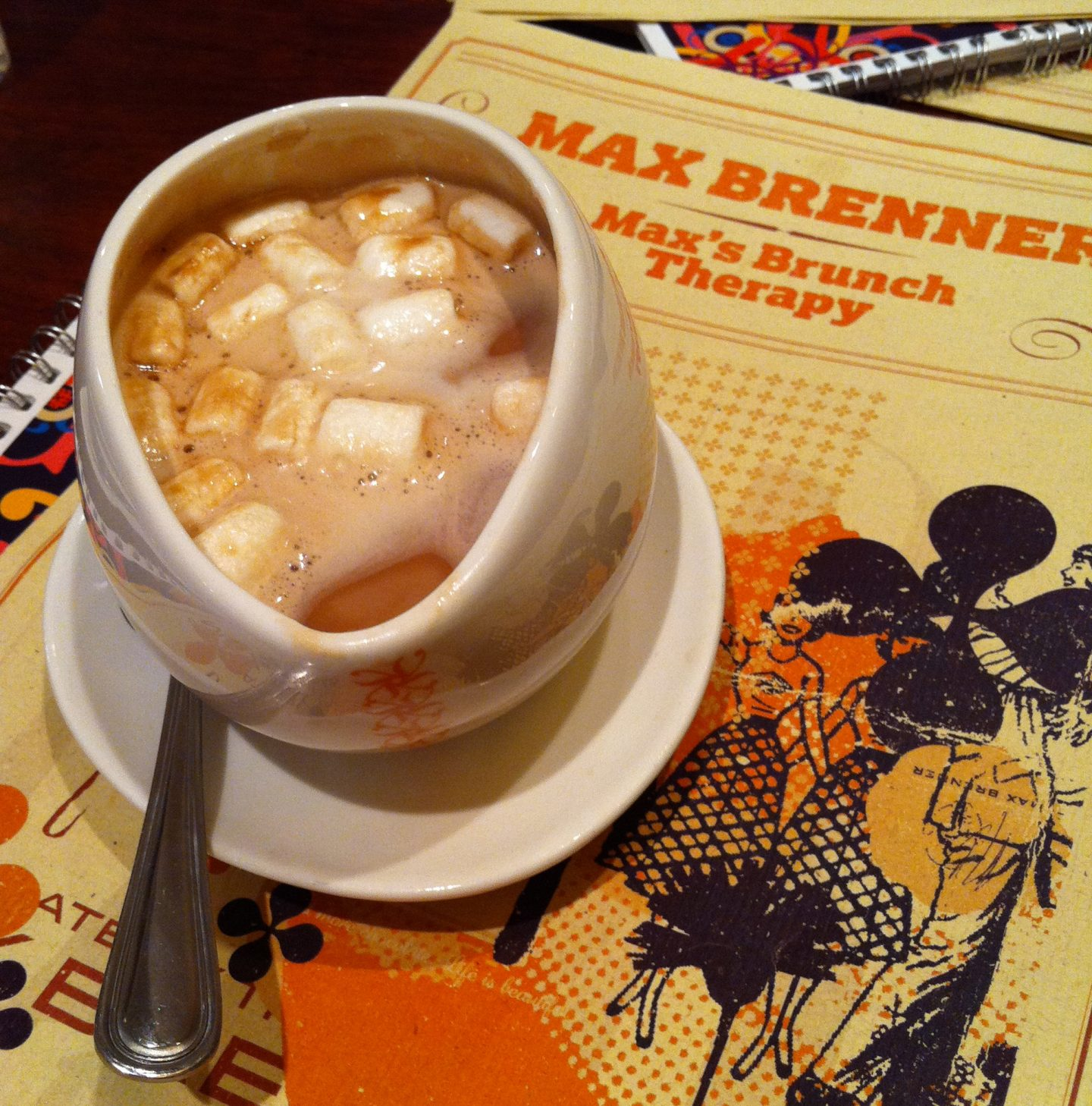 Max Brenner's Hot Chocolate with Marshmallows