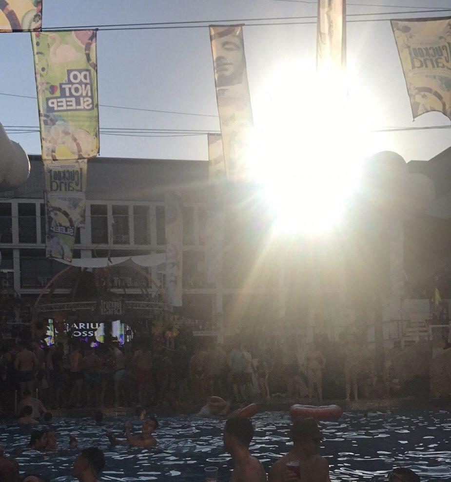 DNS Pool Party Cuckooland
