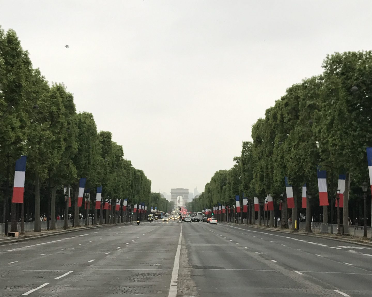 Champs-Elysees with Election flags